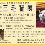 2019年三毛猫展@カフェモフリー