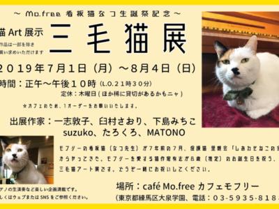 2019年7月のcafé Mo.free (カフェモフリー)占い日
