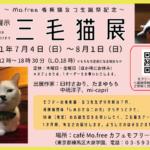 三毛猫展2021